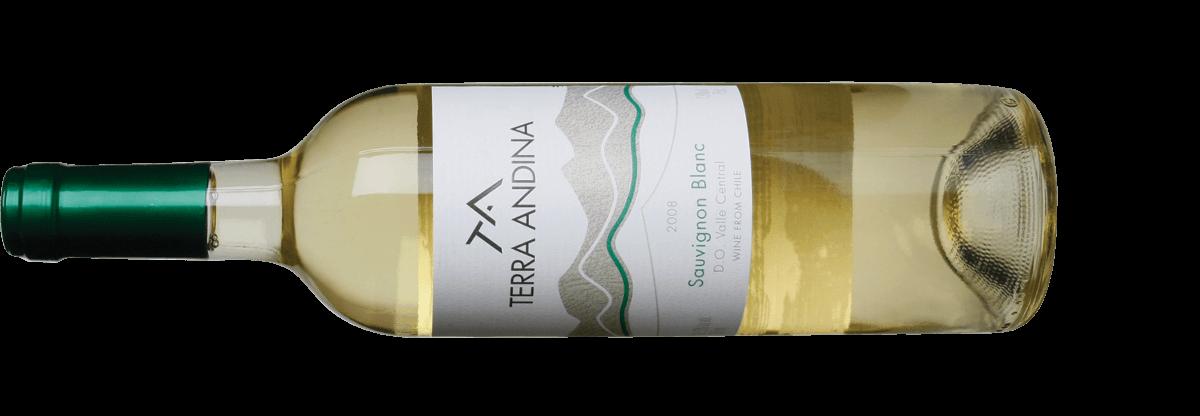 Terra Andina Sauvignon Blanc 2014