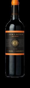 Pigmentum Cahors Malbec 2015  - Georges Vigouroux